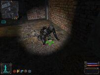 Ss danil 09-08-13 19-02-49 (l04 darkvalley)