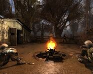 CS camp fire2