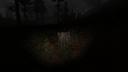 Пень в лесу Кордон ЧН