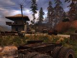 Najemni Stalkerzy w Czerwonym Lesie