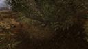 Хабар в кустах Тёмная долина ЧН
