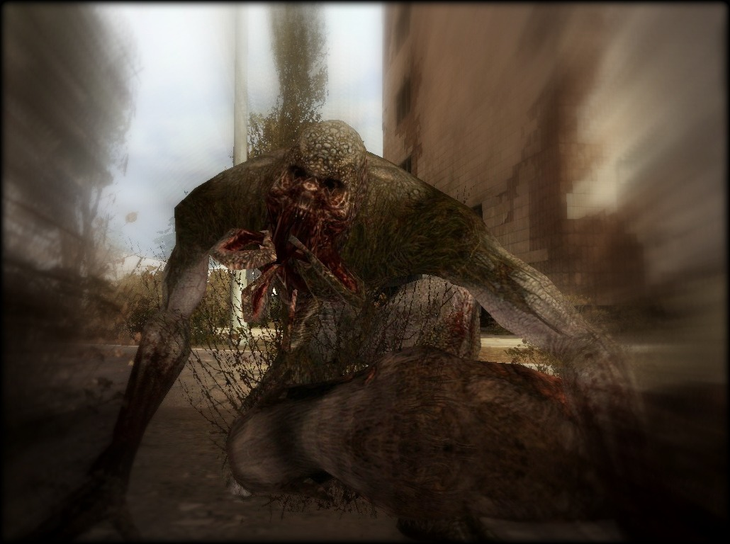 Fichier:Marsh Bloodsucker eating.jpg