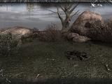 Obóz na wzgórzu