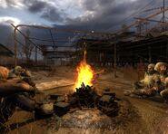 CS camp fire1
