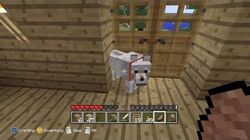 Minecraft - Gregory The Dog 6