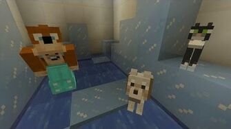Minecraft Xbox - Caring Cat 194