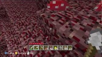 Minecraft - Journey Into The Nether 9