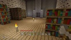 Minecraft - Lovely Library 23-0
