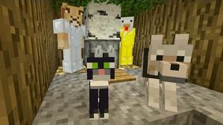Minecraft Xbox - Bees And Bears -255-