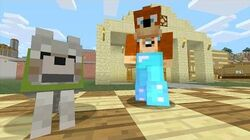 Minecraft Xbox - Tag Time 226-0