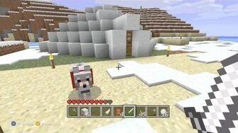 Minecraft - Emergency Igloo 18