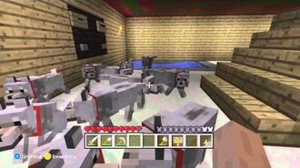 Minecraft - My Lovely Doghouse 11