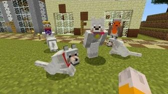 Minecraft Xbox - Pick A Pet -111-