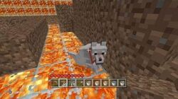 Minecraft - Accidents In The Lava Room 17