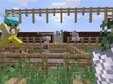 Minecraft Slaves