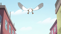 S4E27 Seagull flying high in the sky