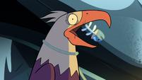 S2E2 Giant eagle feeds on Ludo's fish scraps