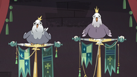 S3E20 King and Queen Pigeon cooing at Star Butterfly