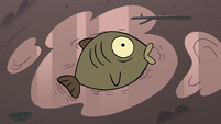 S3E36 Bog fish gasping for air