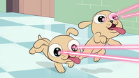 S1E17 Laser puppies frozen