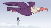 S2E2 Giant eagle passes Ludo and spider