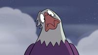 S2E2 Eagle looking confused at Ludo again
