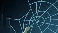 S2E2 Ludo grabs a spider web