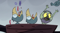 S2E2 Ludo tosses out one of the chicks