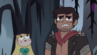 S4E5 Star and Marco look up into the trees