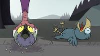 S2E2 Giant eagle snatches Ludo again
