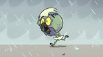 S2E2 Ludo runs to get out of the rain 3