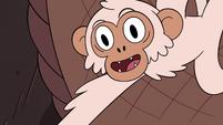 S4E2 White monkey hooting suggestively