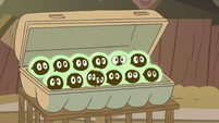 S2E12 Buff Frog's tadpoles waking up