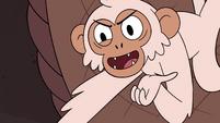 S4E2 White monkey demands Marco's wallet