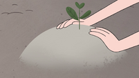 S4E8 Moon plants a seedling in the ground