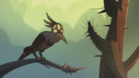 S2E31 Five-eyed crow perched on a tree branch