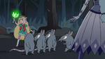 S3E1 Scout rats looking at Star Butterfly