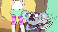 S2E13 Axe koala 'I'm not the one who threw this axe'