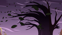 S2E28 Wind blowing through Mewni trees