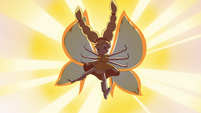 S4E24 Star transforms to Butterfly Form