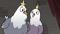 S3E20 King and Queen Pigeon looking at each other