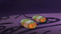 S2E1 Pair of pillbugs appears