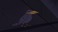 S4E15 Crow perched on a banner pole