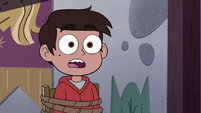 S4E18 Marco 'more to life than being one thing'