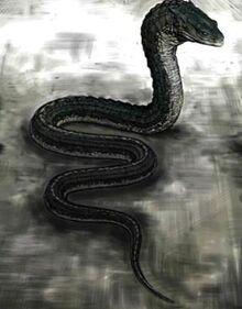 Slytherin's Basilisk
