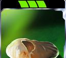 Jawa Bread