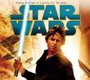 Heir to the Jedi (novel)