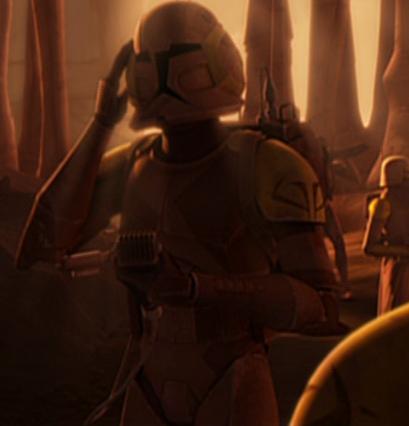 Special ops trooper (Desert) | Star Wars Canon Wiki | Fandom