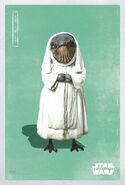 The Last Jedi Caretaker Poster
