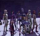 Citadel Rescue Team